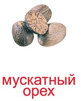 orehi_kartochki-13_resize2.jpg