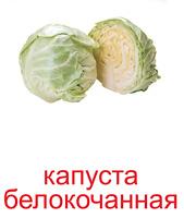 ovoshi_kartochki-2_resize2.jpg