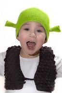 вязаная шапочка Шрека