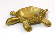 Золотистая черепаха
